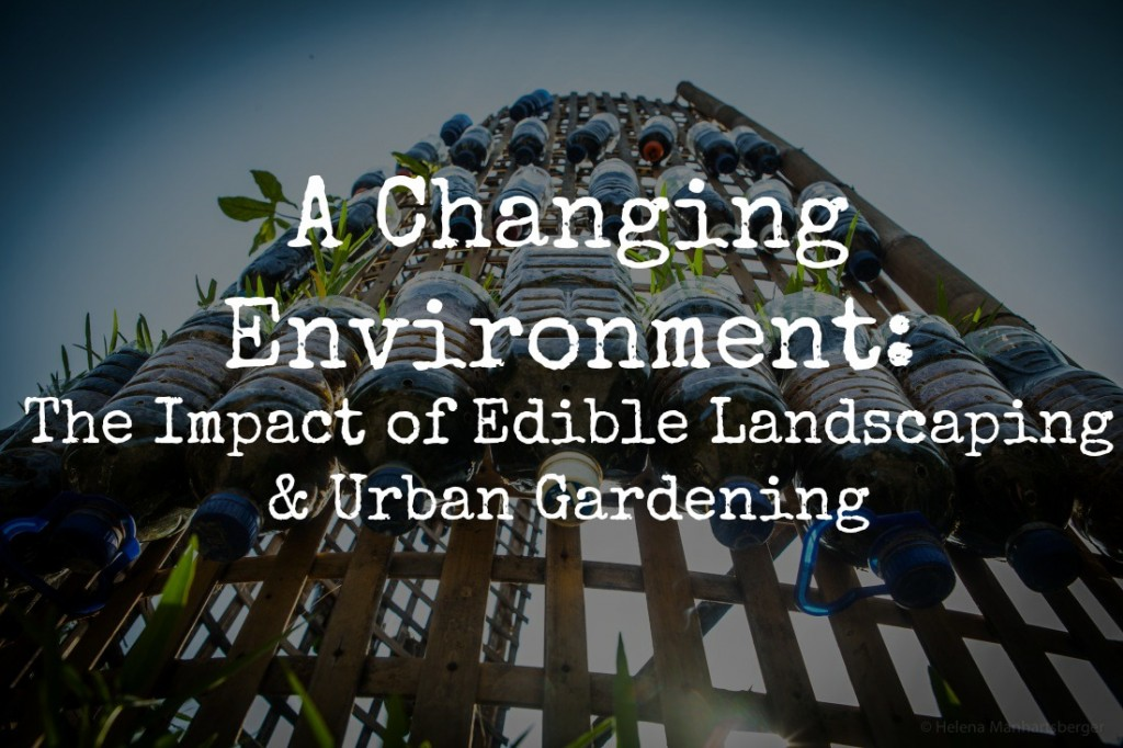 the impact of edible landscaping and urban gardening