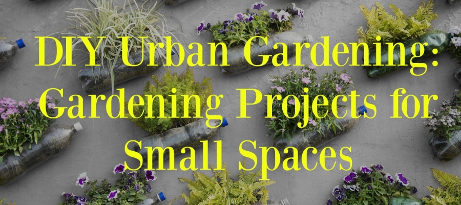 DIY Urban Gardening: Gardening Projects for Small Spaces