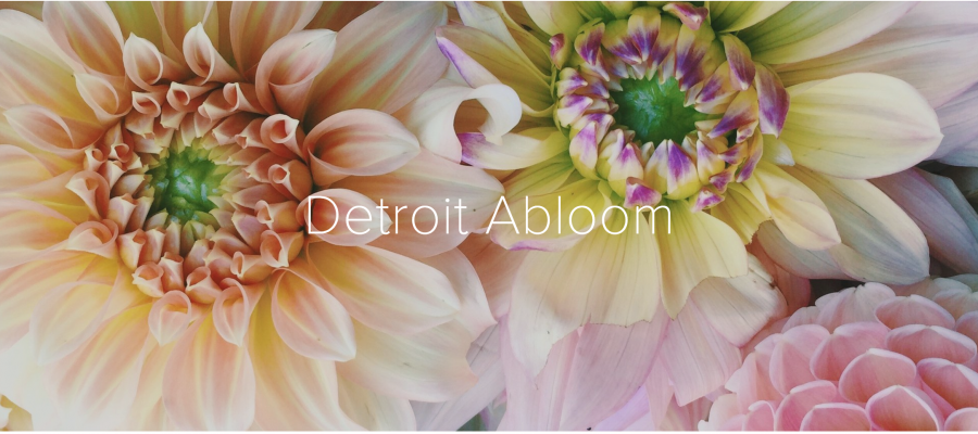 Community Gardens with Detroit ABloom Coming to Urbane